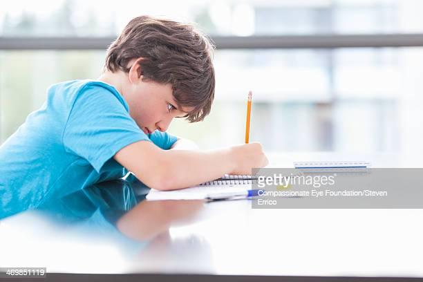 Boy (8-9) doing homework