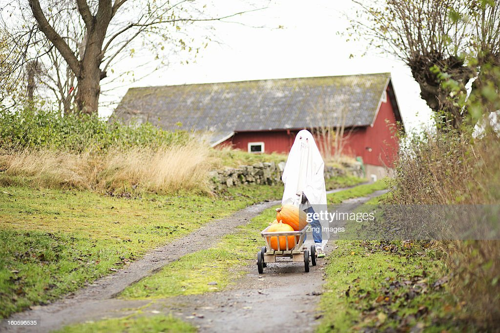 Boy dressed as ghost : Stock Photo