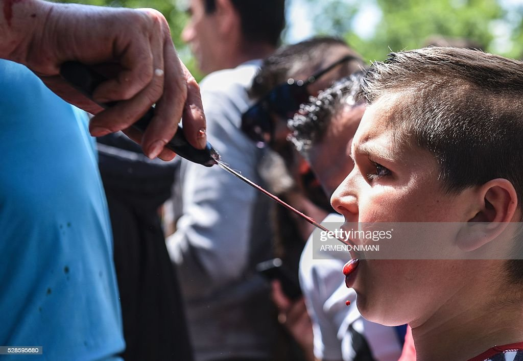 A boy drinks sheep blood with a butcher's knife to prevent bad luck after sheep were ritually slaughtered in the village of Babaj Bokes on May 6, 2016 during celebrations marking Saint George's Day. Saint George is the patron saint of several countries and cities. / AFP / ARMEND