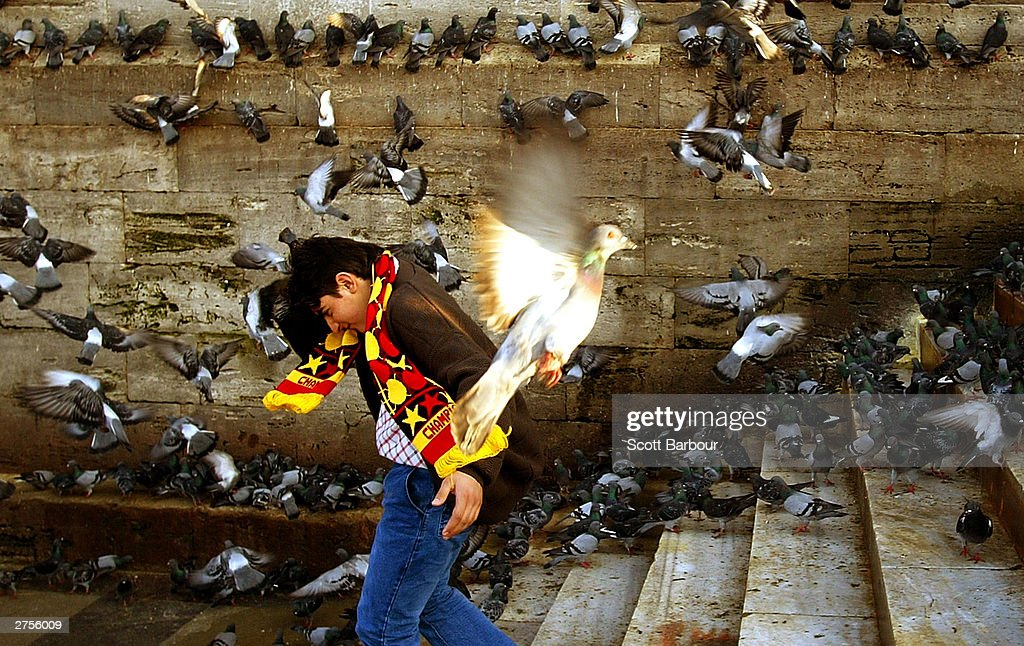 A boy ducks flying birds as he walks down the street November 23, 2003 in Istanbul, Turkey. Daily life is returning to normal after bomb attacks on the British consulate and the HSBC bank headquarters killed 27 people and left hundreds injured last week.