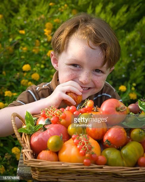 Boy Eating Healthy Vegetables, Child Gardener & Homegrown Heirloom Tomatoes