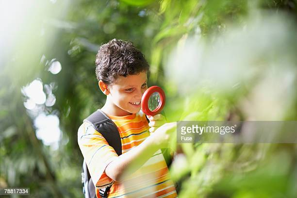 Boy Examining Plant with Magnifying Glass