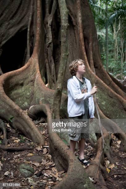 Boy exploring a tropical forrest