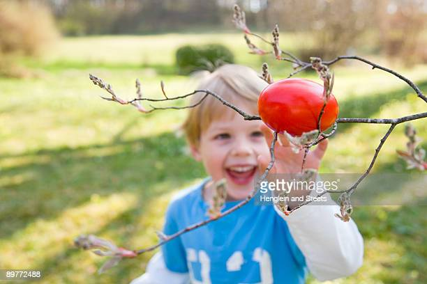 boy finding easter egg on branch