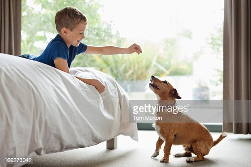Boy giving dog treat in bedroom