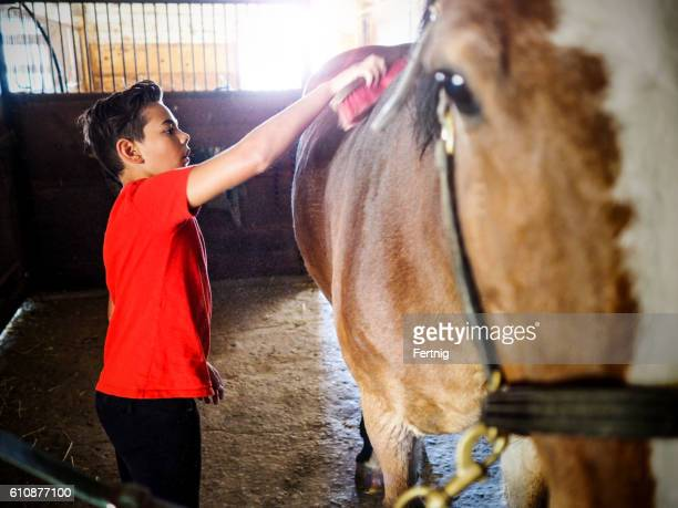 Boy grooming his horse in the stables.