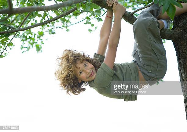 Boy hanging in tree