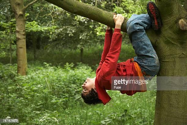Boy Hanging on Branch