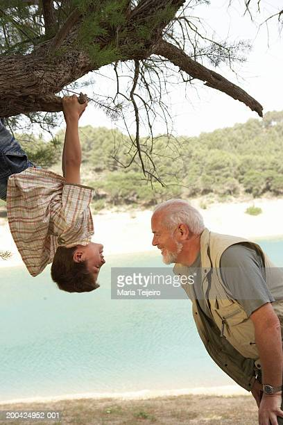 Boy (5-7) hanging upside down from tree facing grandfather, side view