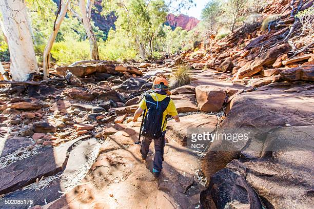Boy hiking in Kings Canyon National park