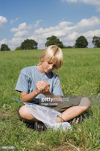 Junge hält ein Schmetterling