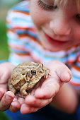 Boy holding a frog in his hands