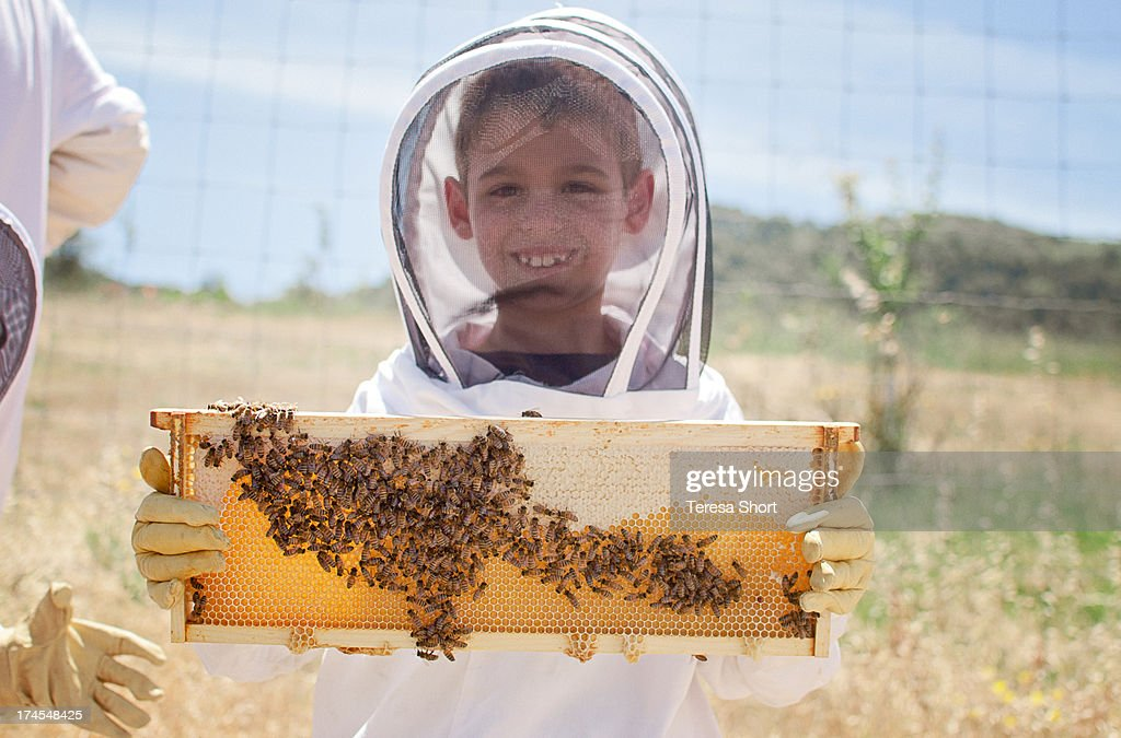 Boy Holding Beehive Frame with Bees and Honey
