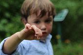 Boy Holding Bug