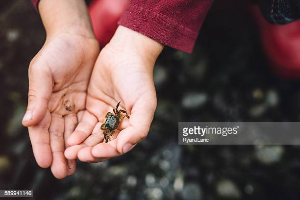 Boy Holding Crab in Hands