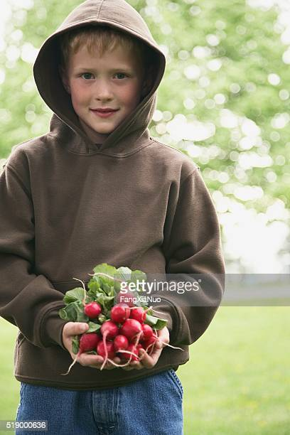Boy holding fresh radishes