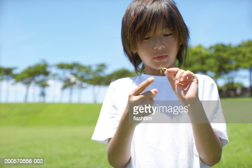 Boy (8-9) holding grasshopper : Stock Photo