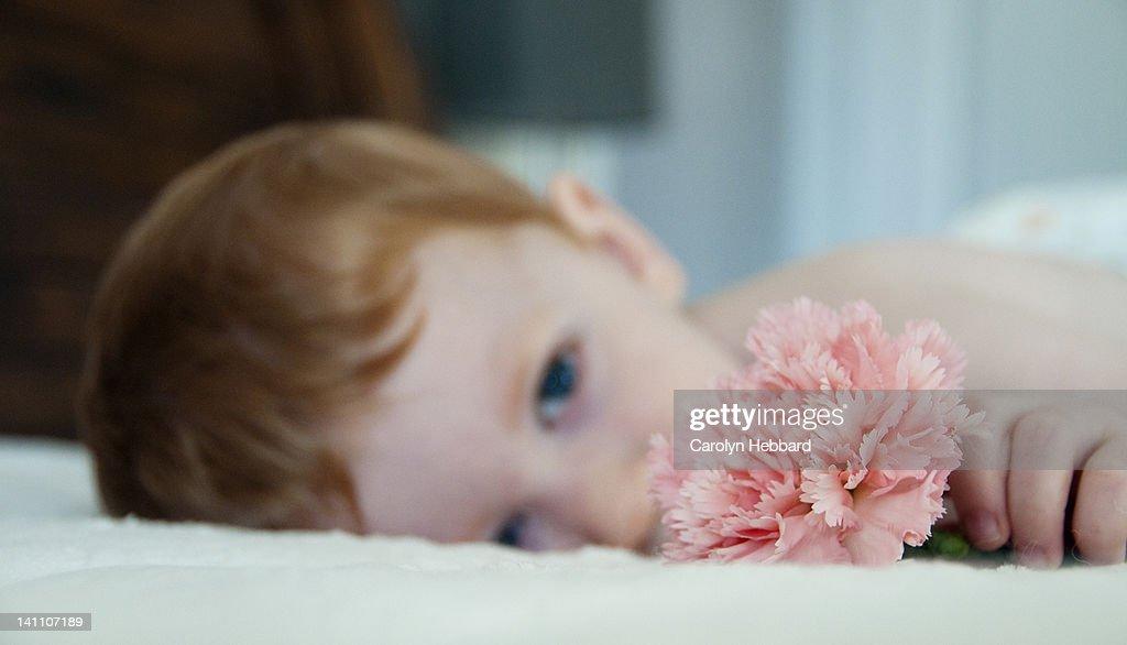Boy holding pink carnation : Stock Photo
