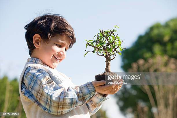 Garçon tenant tree