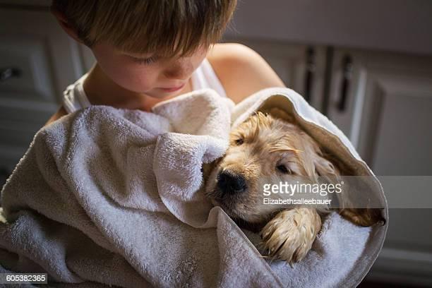 Boy hugging wet  golden retriever puppy dog in a towel