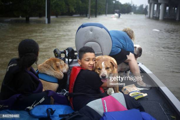 A boy hugs his grandmothers' dog after being rescued from rising floodwaters due to Hurricane Harvey in Spring Texas US on Monday Aug 28 2017 A...