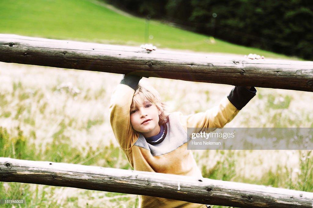 Boy in a field : Stock Photo