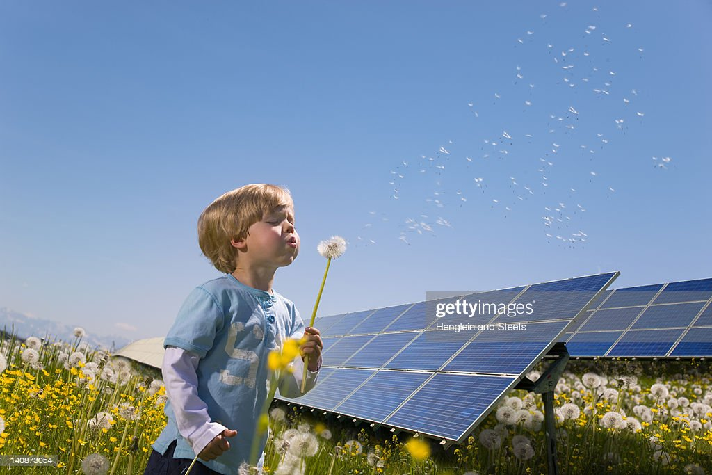 Boy in field with solar panels