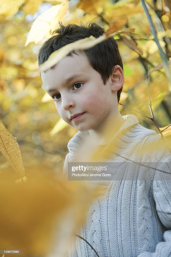 Boy in nature in autumn : Stock Photo