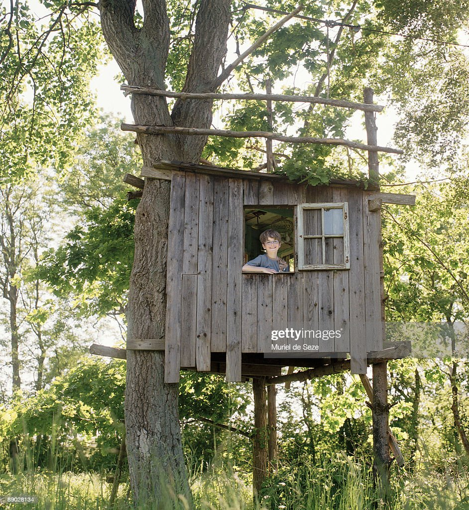 boy in tree house : Stock Photo
