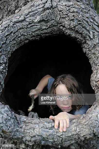boy in tree trunk with stick