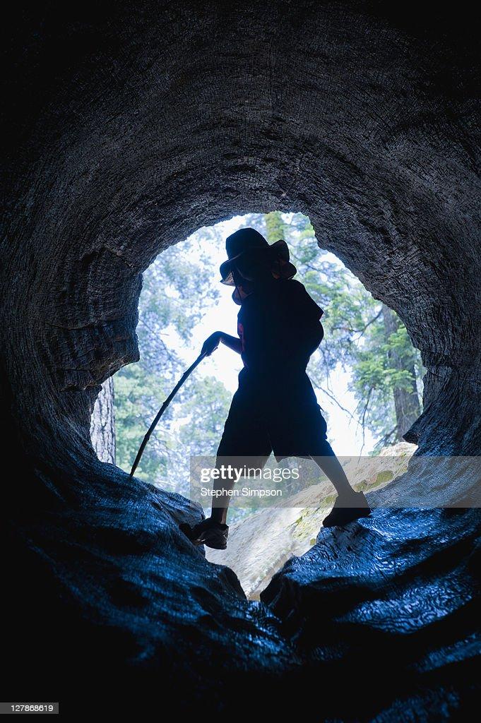 boy inside gigantic hollow log