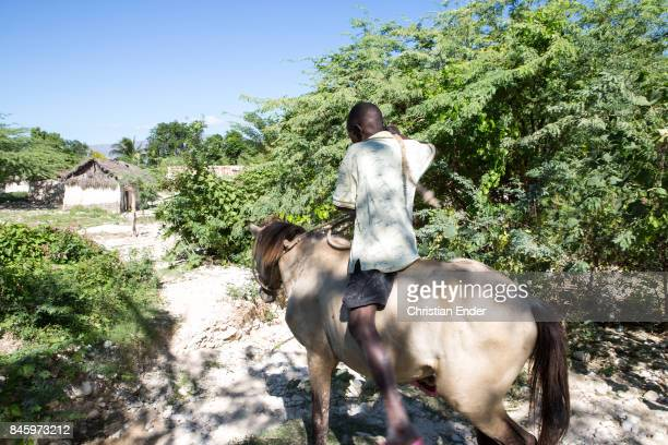 PortauPrince Haiti December 09 2012 A boy is riding a horse towards a partly destroyed village The village was destroyed by the devastating...