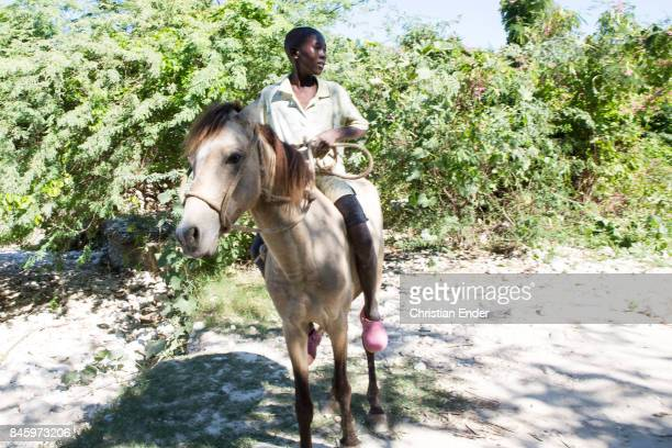 PortauPrince Haiti December 09 2012 A boy is sitting on a horse in PortauPrince near PortauPrince Also this area was strongly affected by the...