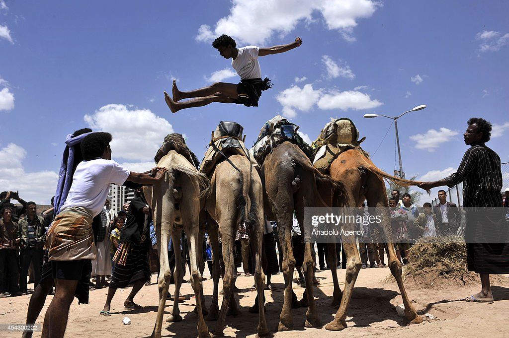 A boy jumps over the camels during a competition in 7th Sanaa Tourism Summer Festival in Sanaa, Yemen on 28 August, 2014.