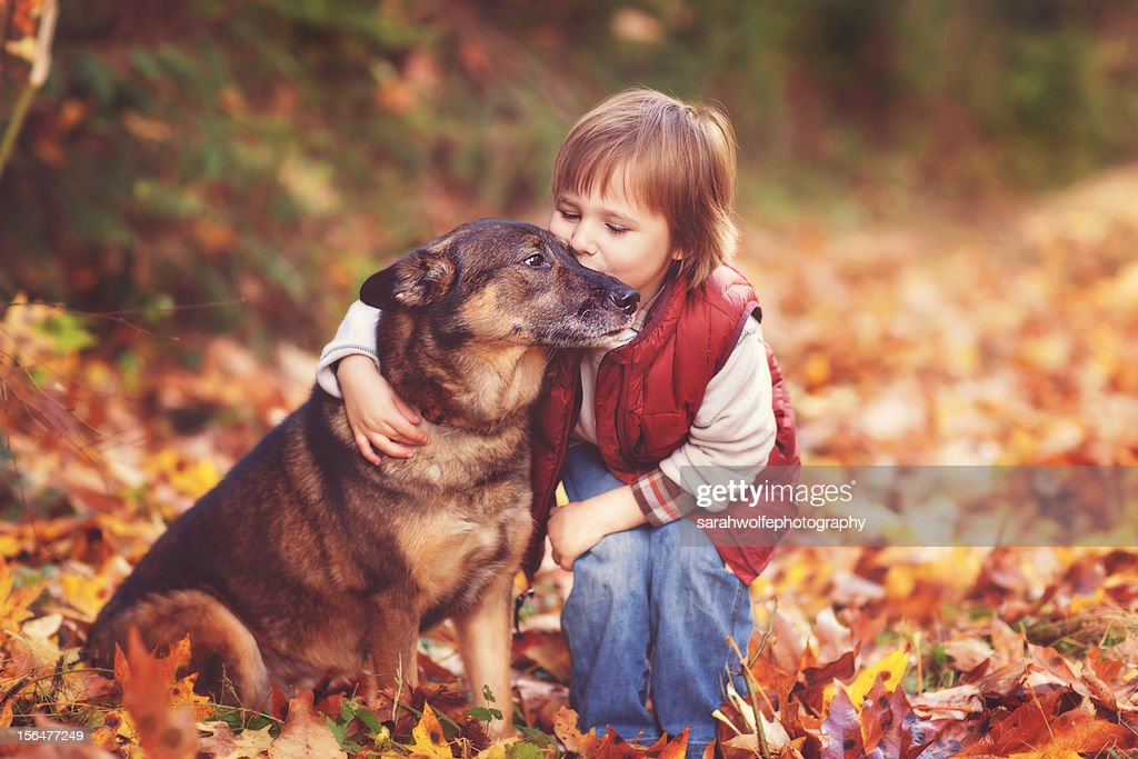 Boy kissing dog in fallen leaves : Stock Photo