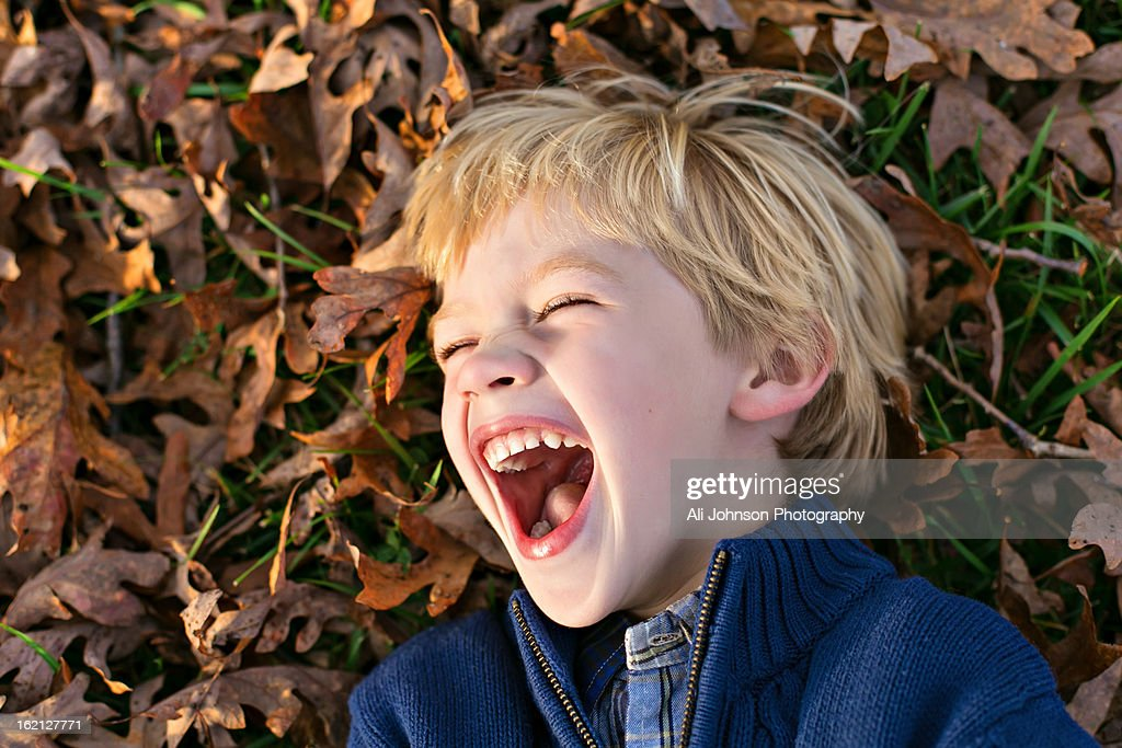 Boy laughing in leaves : Stock Photo