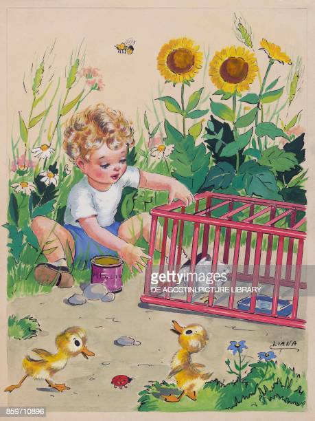 A boy looking at a chick in a cage children's illustration drawing