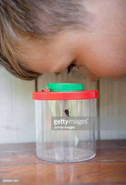 Boy looking at insect in jar