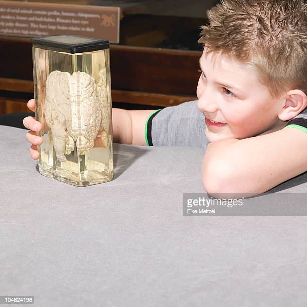 Boy looking at jar containing a brain