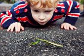 Boy looking at praying mantis