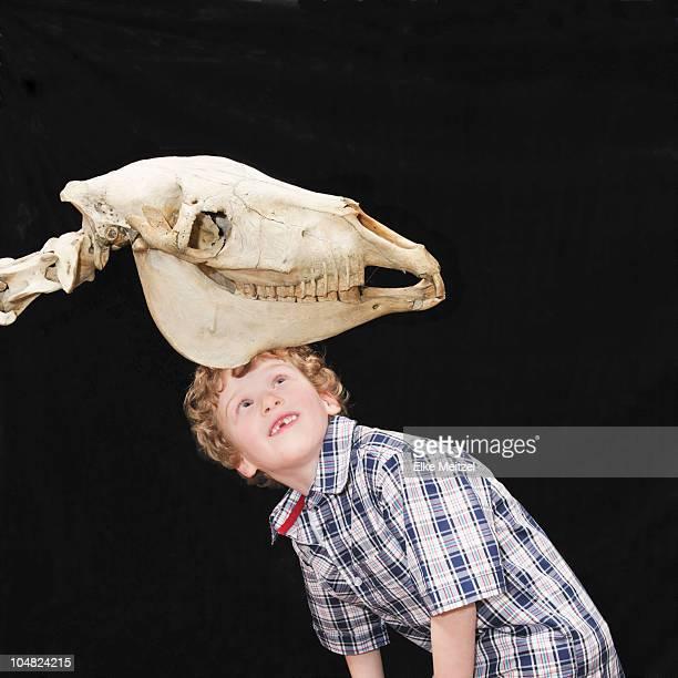 Boy looking at skeleton
