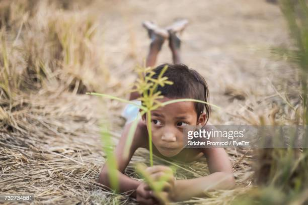 Boy Looking Away While Lying On Grassy Field At Farm