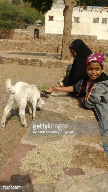 Boy Looking Away While Standing By Mother Feeding Goat Outdoors