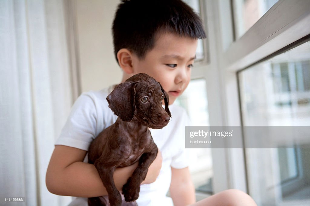 Boy looking out of window : Stock Photo