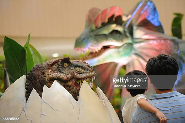A boy looks at a dinosaur replica in the Dinosaur Adventure and Learning Experience Park at Tunjungan Plaza on September 15 2015 in Surabaya...