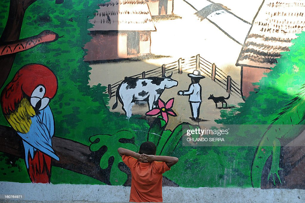 A boy looks at a mural at a school in the poor community of Las Ayestas, in Tegucigalpa on February 5, 2013. Honduras' notorious street gangs, especially the Mara 18 and the Mara 13 or Salvatrucha, have imposed a curfew and are charging a 'war tax' in some of the capital's poorest sectors -- thing which led the police to deploy more personnel in theses areas. The violent maras are active in murders, extorsion, drug dealing, arms trafficking and other crimes. The United Nations says Honduras, a country plagued by powerful street gangs and drug-related violence, has the world's highest homicide rate. In 2010 it was 82 per 100,000 inhabitants, and rose to 86 in 2011. By comparison, in drug-cartel-plagued Mexico, for instance, the rate was about 18 in 2010. AFP PHOTO/Orlando SIERRA