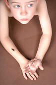 Boy (8-9) lying down holding spider, insect crawling on hand, high angle view