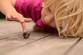 Boy lying on deck touching snail