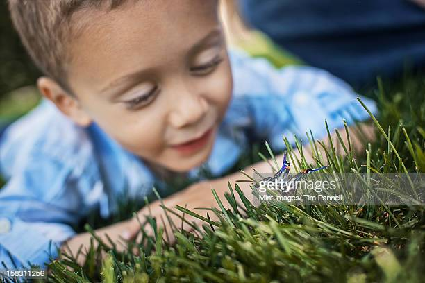 Um Menino deitado na sua cotovelos na relva examinando uma borboleta.
