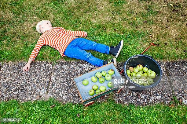Boy lying on lawn after picking apples